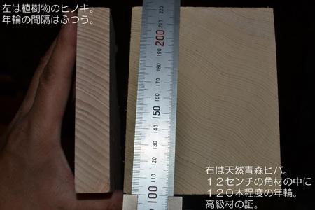 keikousha-hiba-002.jpg