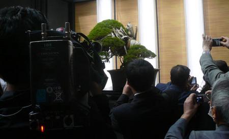 sekai-bonsai-2017-04-28.jpg
