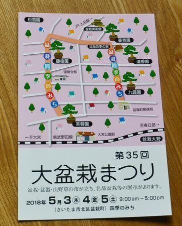 daibonsai-2018.jpg