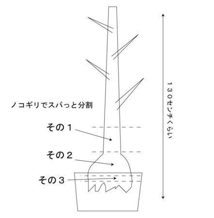 gajyumaru-001.jpg
