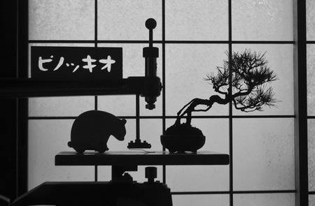 pinokio_650_dpi.jpg